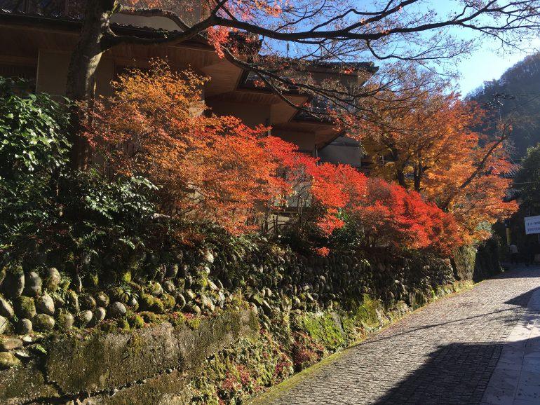 加賀にある山城温泉山中の温泉街の紅葉