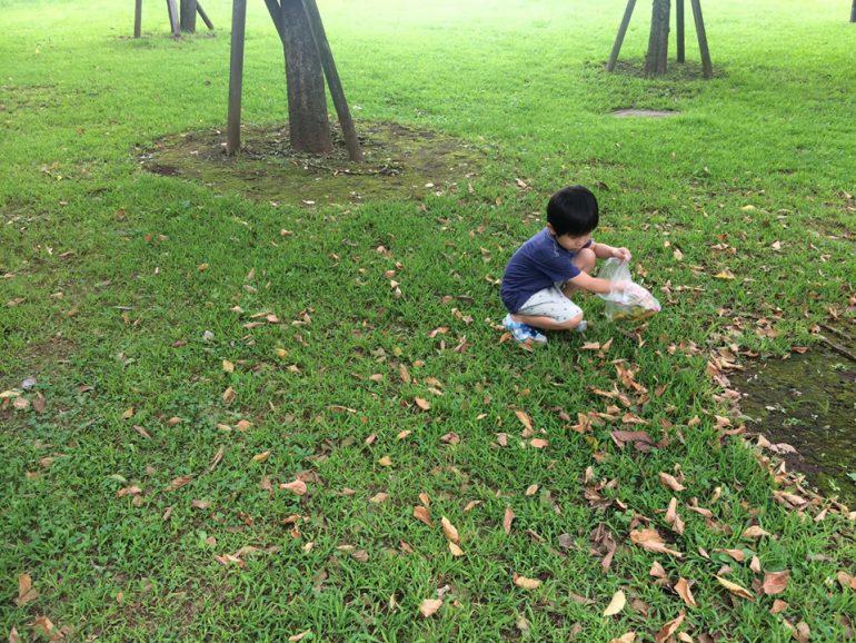 落ち葉を拾う子ども